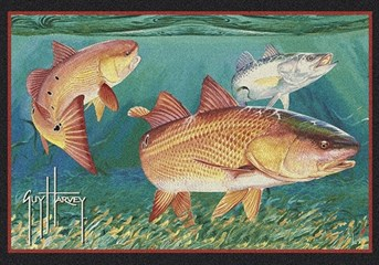Guy Harvey Redfish arearugs