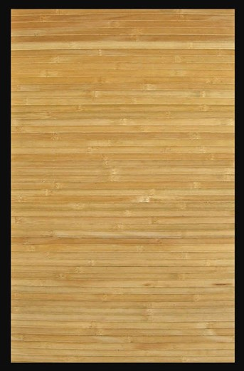 Bamboo Collection Contemporary Natural arearugs