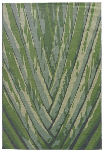 National Geographic Home - Indoor Outdoor Palm Leaf arearugs