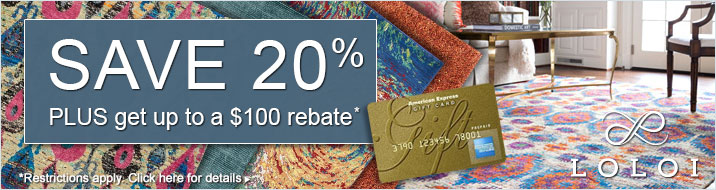 Loloi Rugs - save 20% plus get up to a $100 rebate.