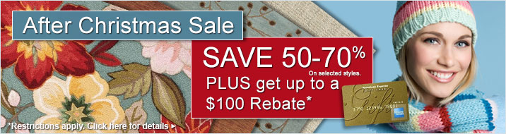 After Christmas Sale - save 50-70% plus get up a $100 rebate