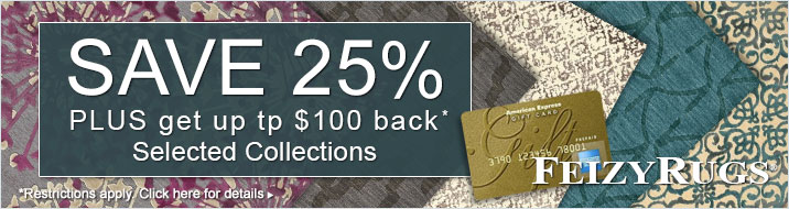 Feizy Rugs - Save 25% plus get up to $100 back on the Azeri III, Saphir Rubus, Saphir Yardley and Soma Collections.