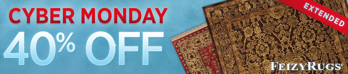 Feizy Rugs - Save 40%