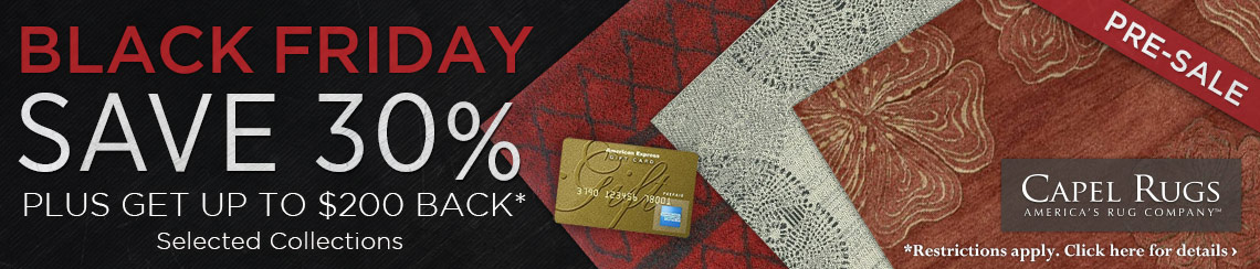 Capel Rugs - Save 30% plus get up to a $200 rebate.