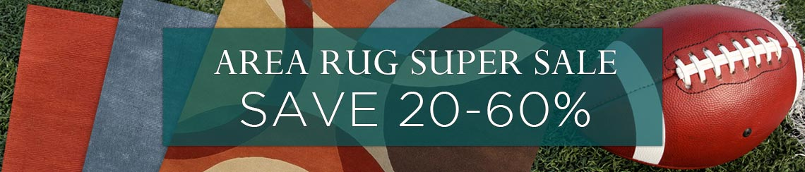 Area Rug Super Sale