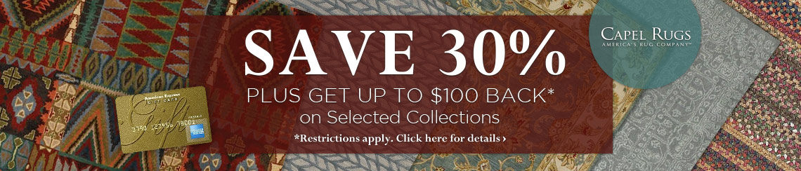 Save 30% plus get up to $100 back.