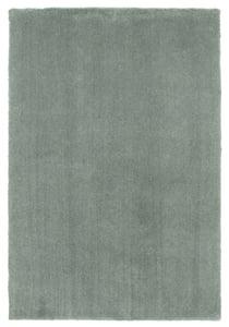 Slate Sage (1565) Bliss Bliss Shag Area Rugs