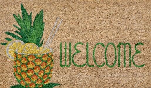 Natural (2096-12) Natura Welcome Pineapple Novelty / Seasonal Area Rugs