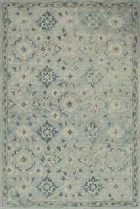 Light Blue Hawthorne HV-01 Traditional / Oriental Area Rugs