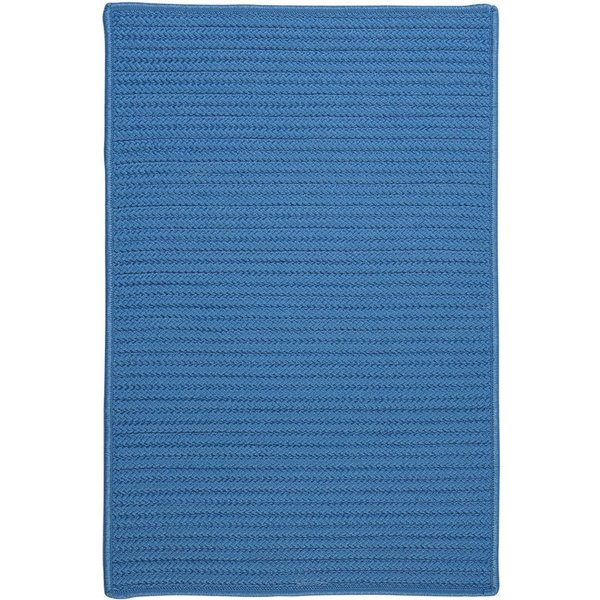 Blue Ice (H-870) Country Area Rug