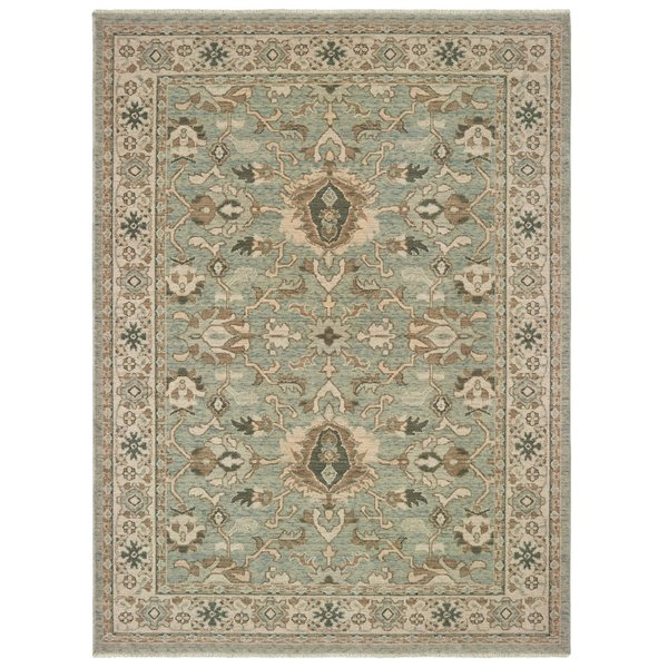 Blue, Brown (A) Traditional / Oriental Area Rug