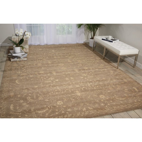 Taupe Traditional / Oriental Area Rug