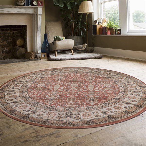 Terracotta Traditional / Oriental Area Rug