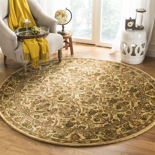 Gold (C) Traditional / Oriental Area Rug
