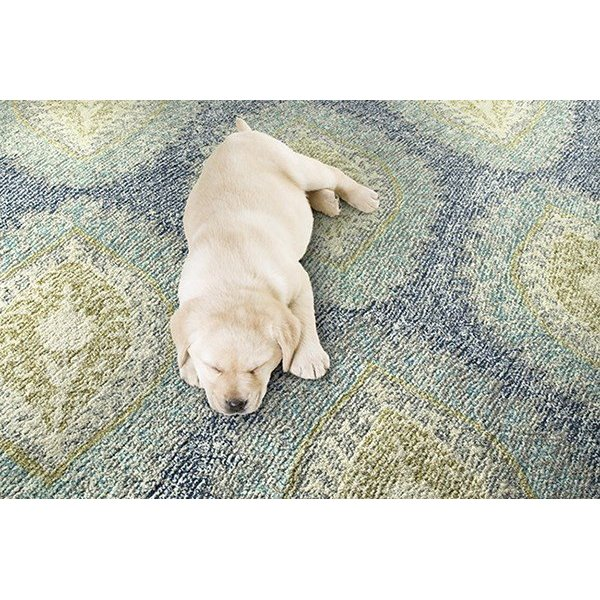 Denim, Turquoise, Ivory (17) Contemporary / Modern Area Rug