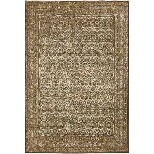 Dark Brown, Tan, Pale Blue, Beige Traditional / Oriental Area Rug