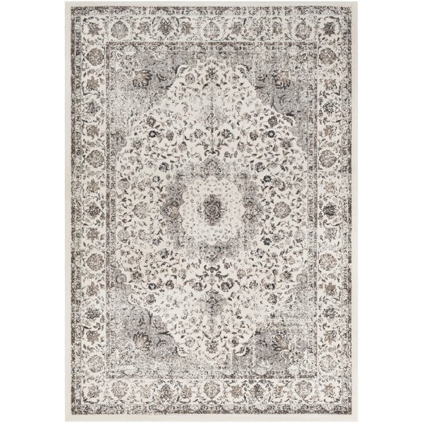Charcoal, Medium Gray Traditional / Oriental Area Rug