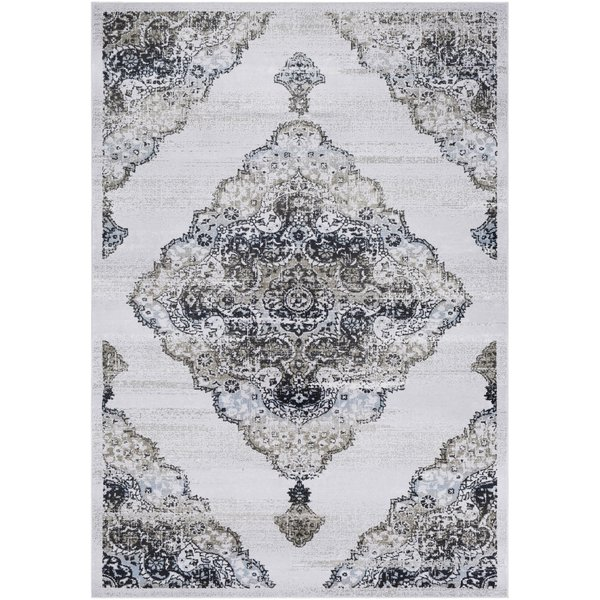 Light Grey, Taupe, Navy, White, Camel, Pale Blue Traditional / Oriental Area Rug