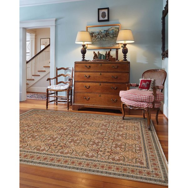 Ivory, Blue (3455-630) Traditional / Oriental Area Rug