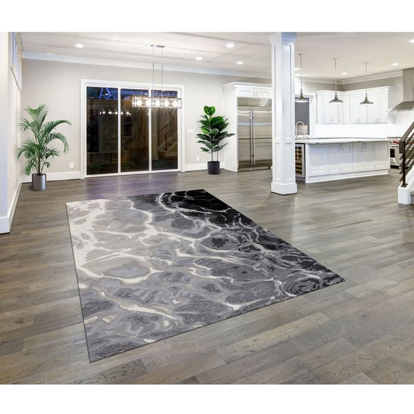 Black, White (9146-48) Abstract Area Rug