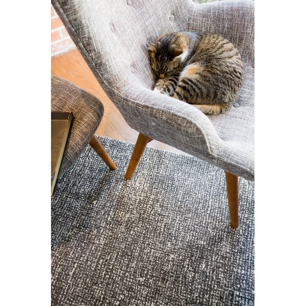 Solid Gray, Taupe (BRP-05) Contemporary / Modern Area Rug