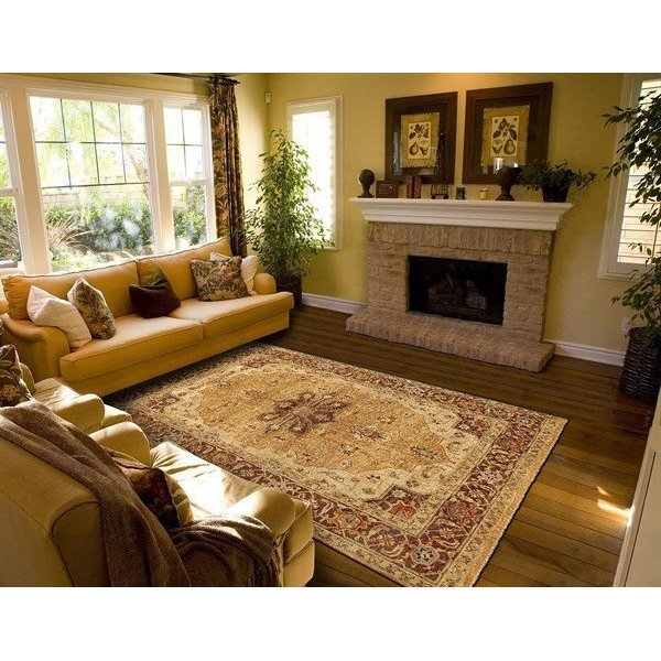 Gold, Brown Traditional / Oriental Area Rug