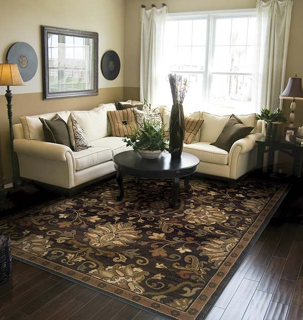 Brown, Beige (G1) Traditional / Oriental Area Rug