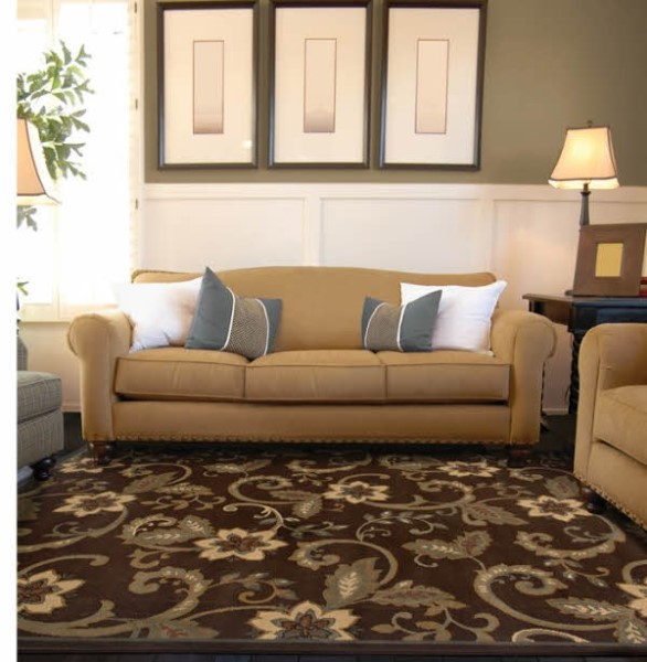 Brown, Ivory Floral / Botanical Area Rug