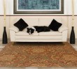 Product Image of Blue, Rust Traditional / Oriental Area Rug
