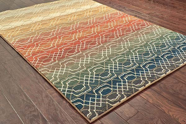 Brown, Rust (B) Transitional Area Rug