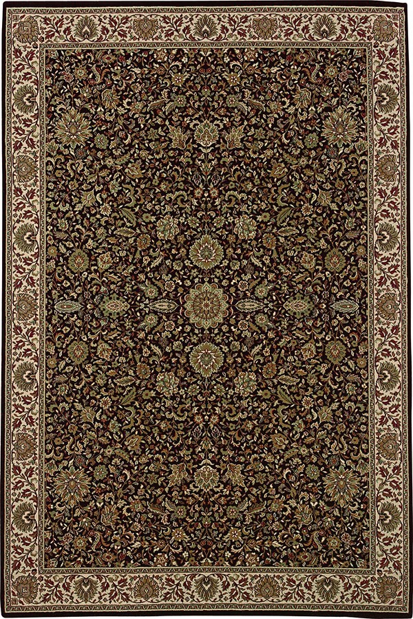 Brown, Ivory (172D2) Traditional / Oriental Area Rug