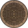 Product Image of Brown, Ivory (172D2) Traditional / Oriental Area Rug