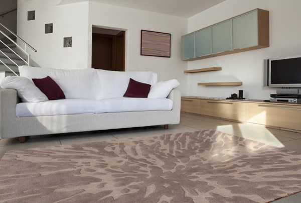 Taupe  specialbuys