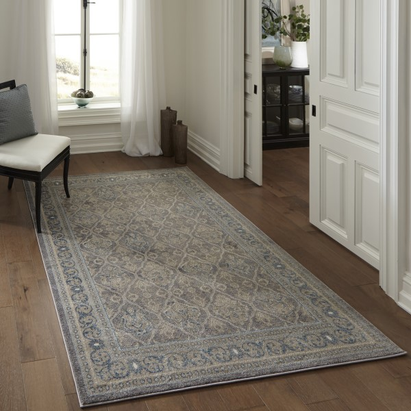Taupe, Blue Traditional / Oriental Area Rug