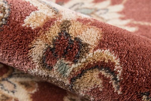 Rust Traditional / Oriental Area Rug
