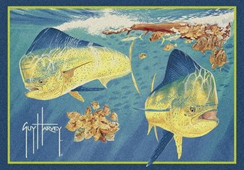 Guy Harvey Dorado  arearugs