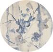 Product Image of Ivory, Blue Floral / Botanical Area Rug