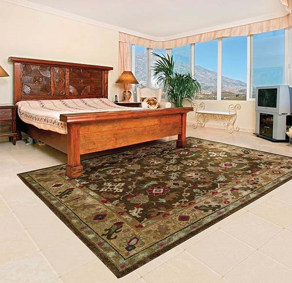 Espresso Traditional / Oriental Area Rug