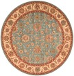 Product Image of Aqua Traditional / Oriental Area Rug