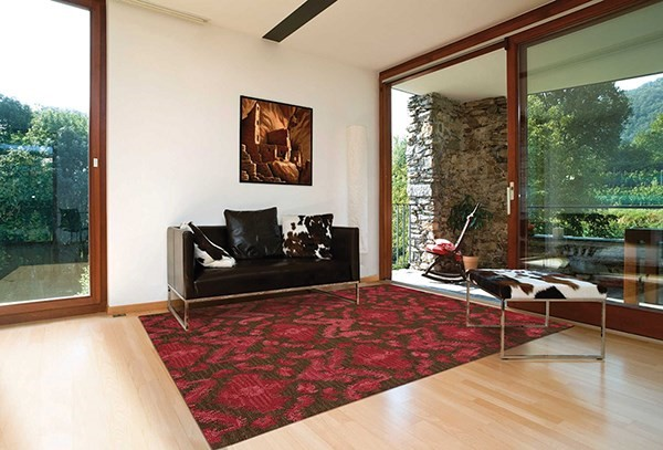 Brown, Red Bohemian Area Rug