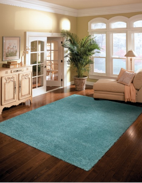 Nourison Amore Amor 1 Rugs Solid Area