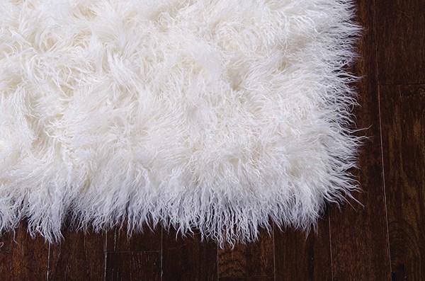 Ivory Shag Area Rug