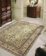 Product Image of Light Green Traditional / Oriental Area Rug