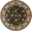 Product Image of Midnight Traditional / Oriental Area Rug