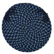 Product Image of Old Glory (PL-13) Outdoor / Indoor Area Rug