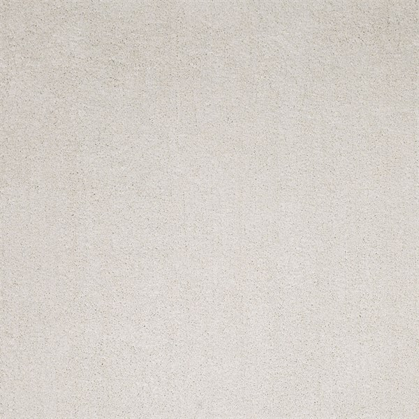 Ivory White (1550) Shag Area Rug