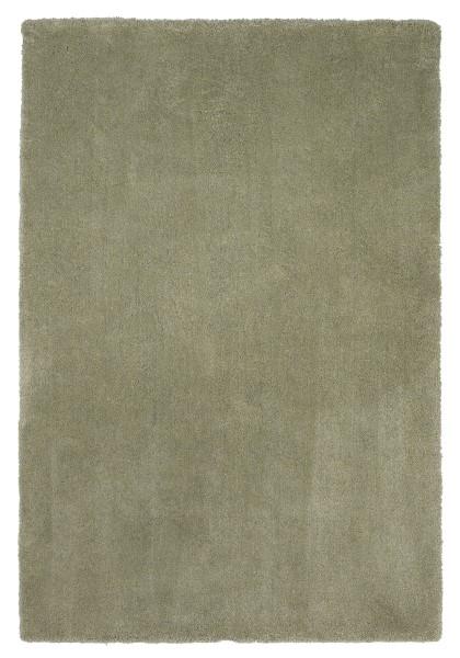 Sage (1568) Shag Area Rug