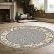 Product Image of Grey Traditional / Oriental Area Rug