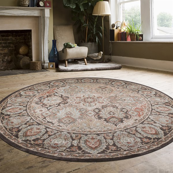 Brown Traditional / Oriental Area Rug