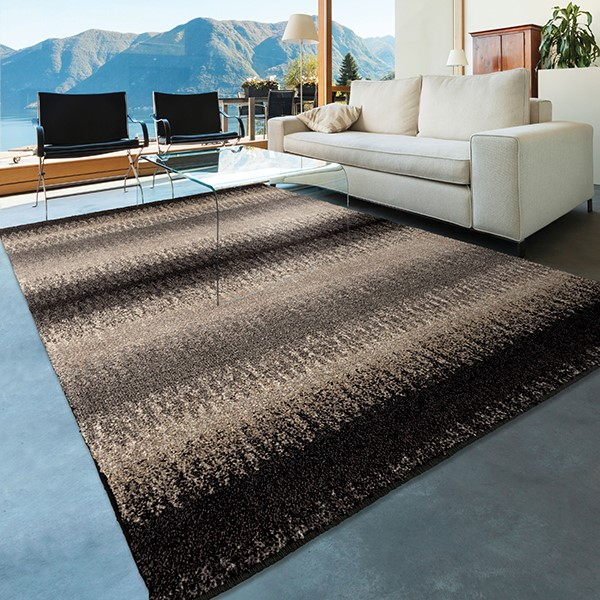 Black, Grey Charcoal (4310) Transitional Area Rug